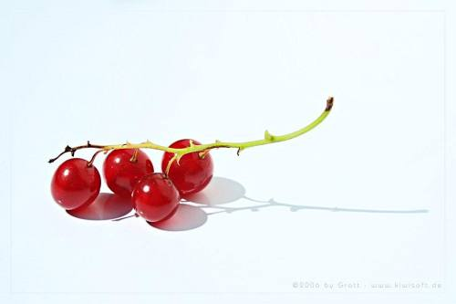 red currants by Kiwisaft.de