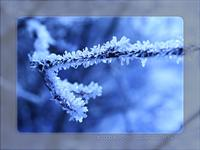 blue frost 1 by Kiwisaft.de